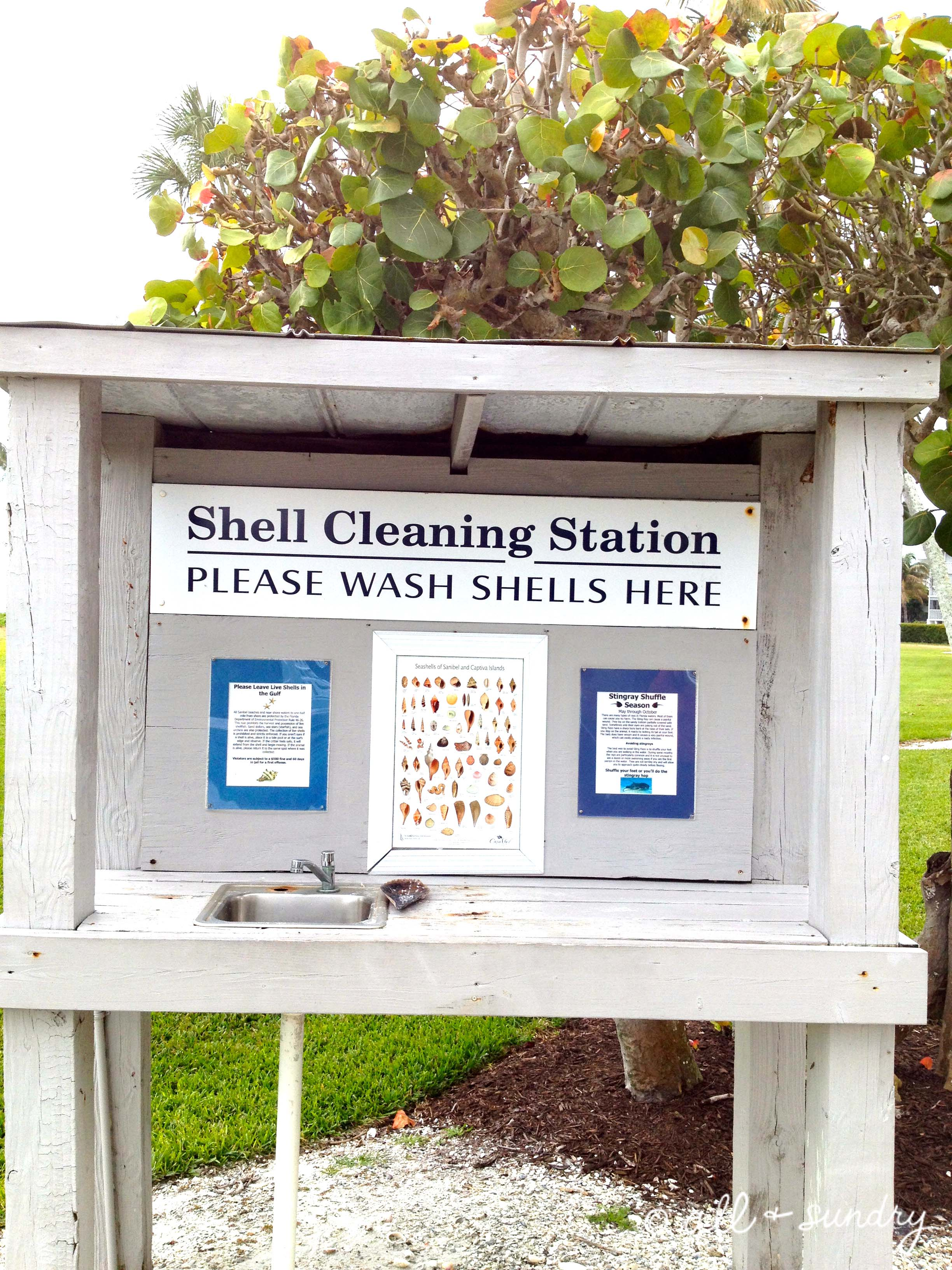Shell Cleaning Station
