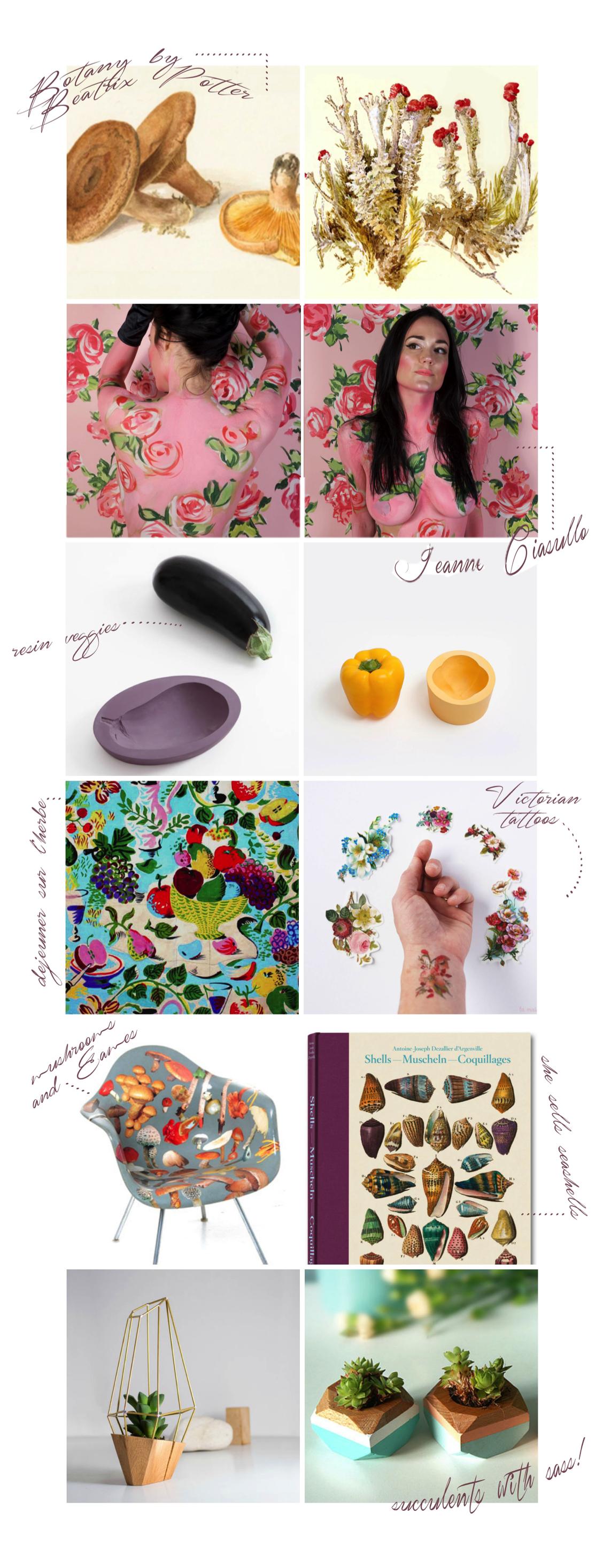 Botany & Blooms